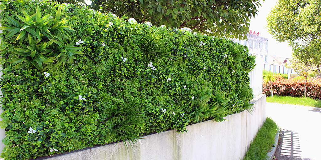 Artificial Hedge Screening Photinia Along A Back Timber Fence Designer Plants