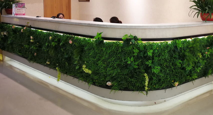 artificial hedge screening for accent wall