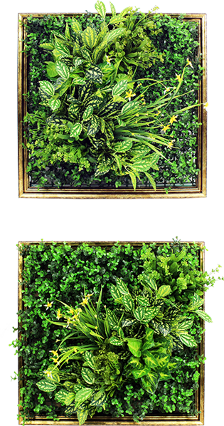 Framed Plants On Wall Art 3d Artificial Green Wall