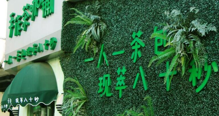 Artificial Green Wall For Milk Tea Store Landscape
