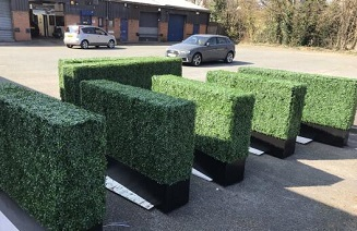 UK clients fave boxwood planters.jpg