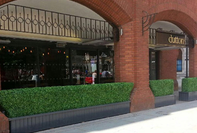 faux boxwood hedges for area or space divider
