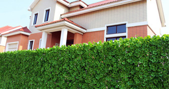 artificial boxwood hedges for privacy safety