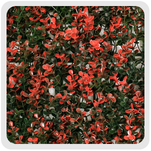 artificial boxwood hedge, G0602A006 red