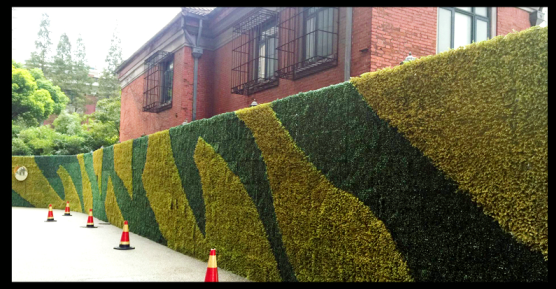 faux hedges for feature greenery wall