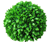 artificial topiary ball,rose leaf ball