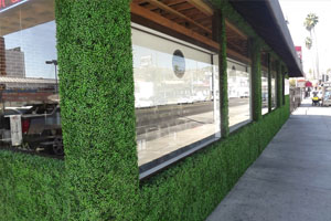 artificial hedging screening for storefronts landscape