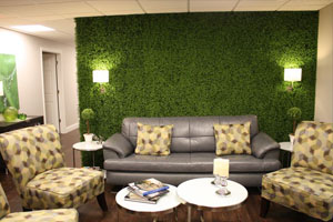 artificial hedges for interior accent wall