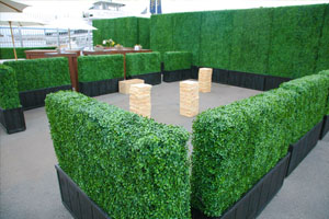 artificial hedge dividers for Lounge & Cafe